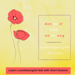 Luxembourgish lesson Luxembourgish articles