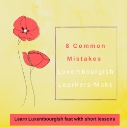Luxembourgish lesson common mistakes