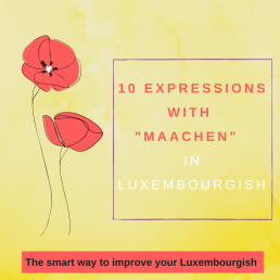 Luxembourgish expressions maachen