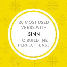 20 most used Sinn verbs