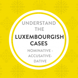 Understand the Luxembourgish Cases
