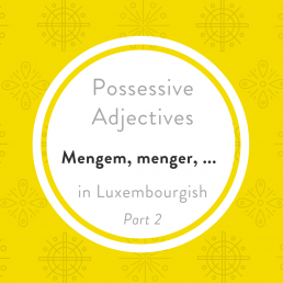 Possessive pronouns mengem dative Luxembourgish
