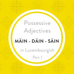 Mäin däin hir Luxembourgish possessive