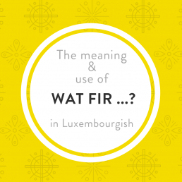 Wat fir in Luxembourgish