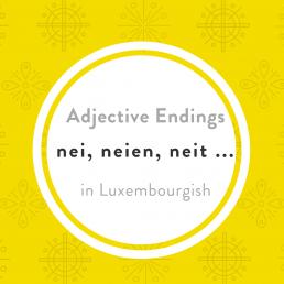 Luxembourgish Adjective endings
