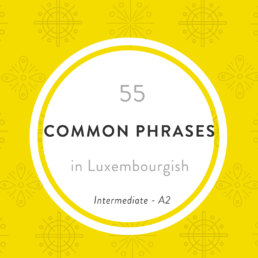 Luxembourgish lesson Phrases Intermediate level