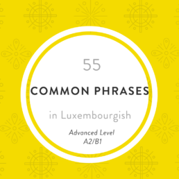 Luxembourgish phrases advanced